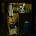 Solar-Shed-Lighting