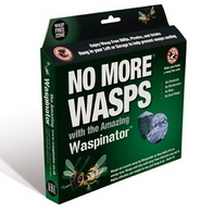 chemcial-free-wasp-treatment