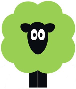 Sheep-Wool-Insulation-Ireland-UK