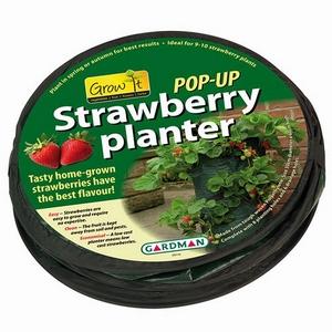 gardman-pop-up-strawberry-planter-jpg