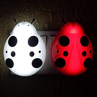 ladybird-lighting-jpg