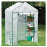 Mini-Walk-In-Greenhouse
