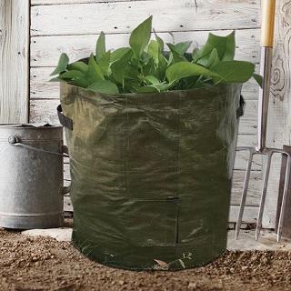 potato-sprouting-bags-jpg