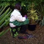 Quicksit-gardening