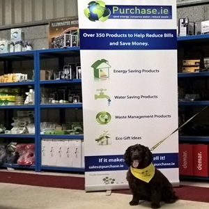 Purchase.ie Head of Security Ralph Insisted we support Dogs Trust Ireland this year!