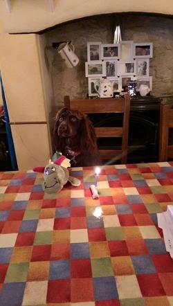 ralph birthday